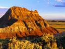 Welcome to WyomingLifeScience.com